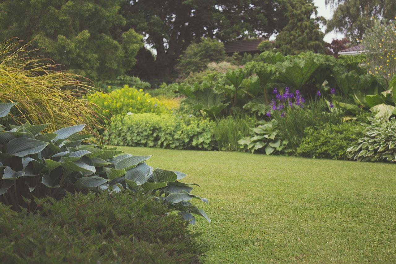 ¿Cómo escoger un robot cortacésped para un jardín moderno?